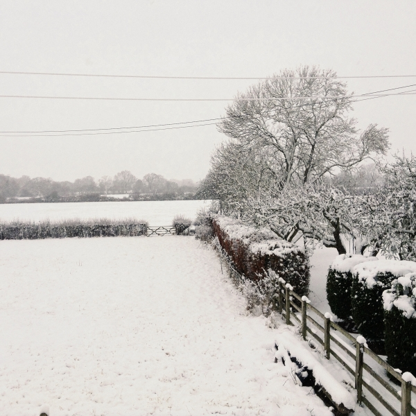 snow-04