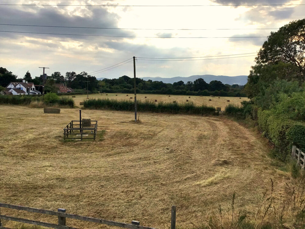 Rhydd Barn fields hay harvested and baled